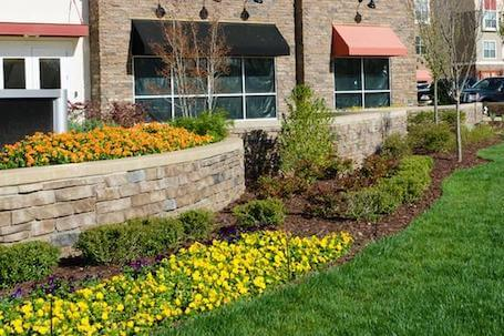 Commercial lawn maintenance-flower bed