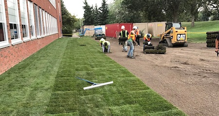 Commercial Landscaping- Sodding